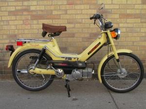 1977 Newport000