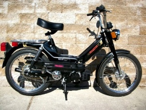 Black_Puch002