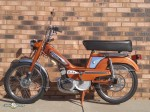1980 Copper Moby-1