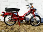 Red Moby 50v-18