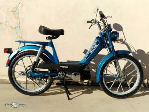 Blue Sachs-1